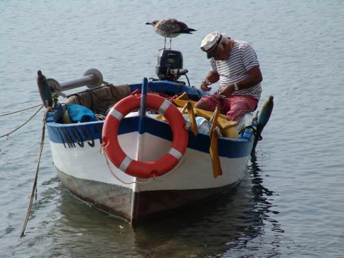 traversée corse,bateau toulon bastia,aller en corse 2016,prendre bateau corse,bateaux corsica